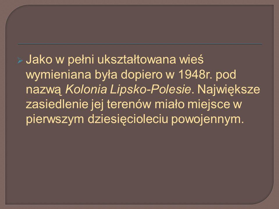 Jako w pełni ukształtowana wieś wymieniana była dopiero w 1948r. pod nazwą Kolonia Lipsko-Polesie. Największe zasiedlenie jej terenów miało miejsce w