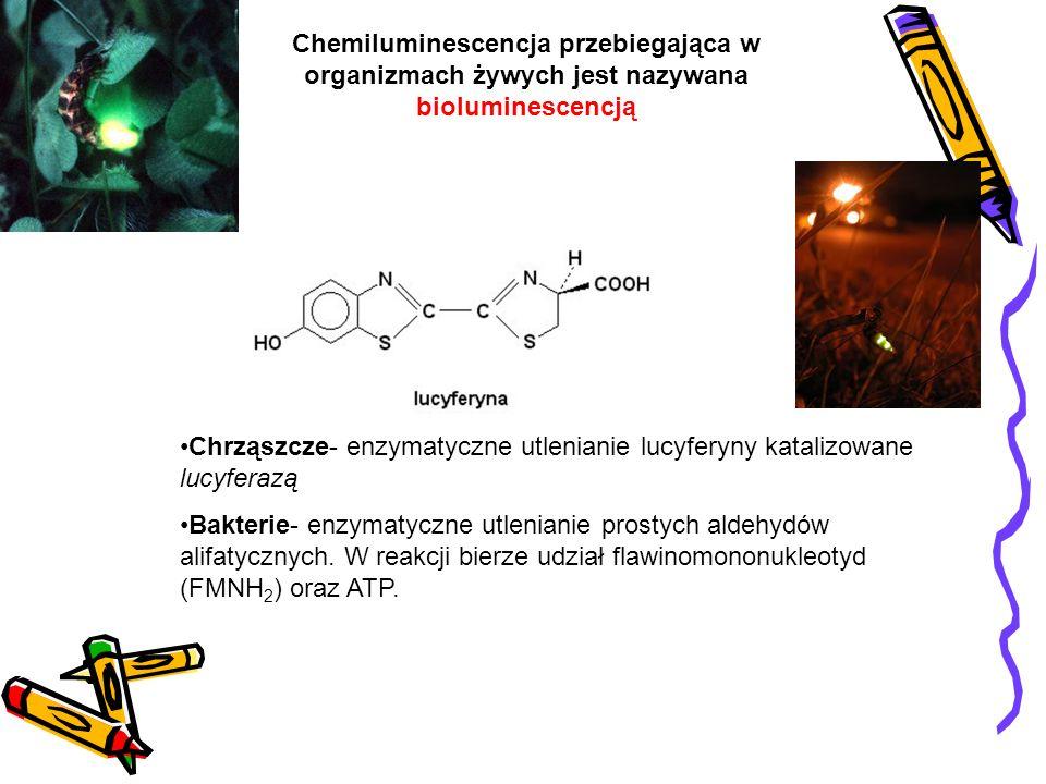 Chrząszcze- enzymatyczne utlenianie lucyferyny katalizowane lucyferazą Bakterie- enzymatyczne utlenianie prostych aldehydów alifatycznych. W reakcji b