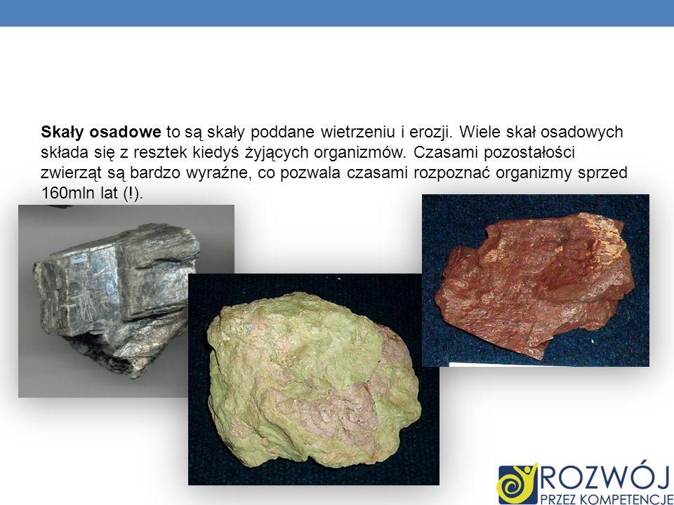 Skały osadowe to są skały poddane wietrzeniu i erozji. Wiele skał osadowych składa się z resztek kiedyś żyjących organizmów. Czasami pozostałości zwie