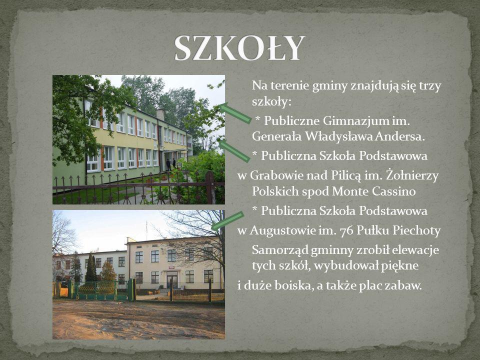 Na terenie gminy znajdują się trzy szkoły: * Publiczne Gimnazjum im. Generała Władysława Andersa. * Publiczna Szkoła Podstawowa w Grabowie nad Pilicą