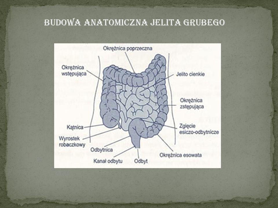 Epidemiologia Według najbardziej aktualnych danych z Krajowego Rejestru Nowotworów w 2008 roku w Polsce u obu płci odnotowano łącznie ponad 14 600 zachorowań na nowotwory złośliwe jelita grubego i ponad 10 400 spowodowanych przez nie zgonów.