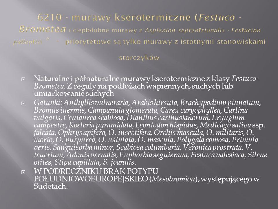 Naturalne i półnaturalne murawy kserotermiczne z klasy Festuco- Brometea. Z reguły na podłożach wapiennych, suchych lub umiarkowanie suchych Gatunki: