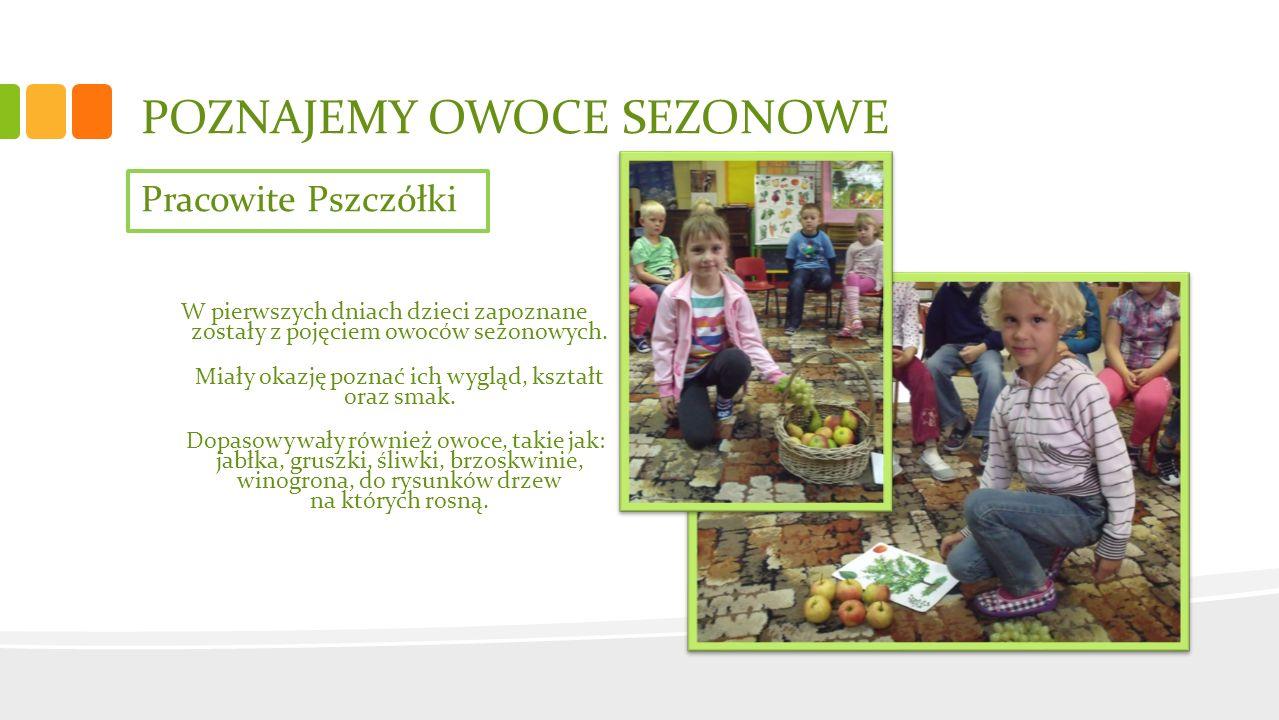 Pracowite Pszczółki Dużo frajdy przysporzyło dzieciom wykonywanie pracy plastycznej poprzez stemplowanie połówkami owoców maczanymi w farbie plakatowej na sylwecie słoika.