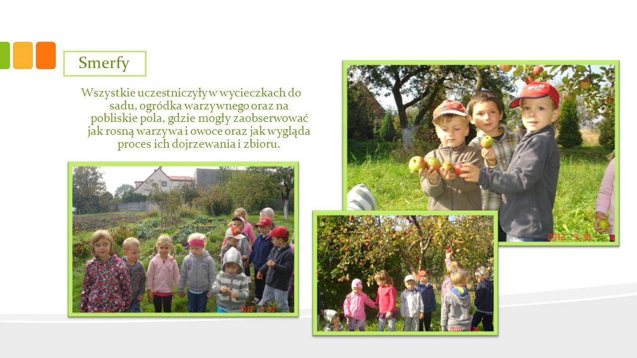 Wszystkie uczestniczyły w wycieczkach do sadu, ogródka warzywnego oraz na pobliskie pola, gdzie mogły zaobserwować jak rosną warzywa i owoce oraz jak