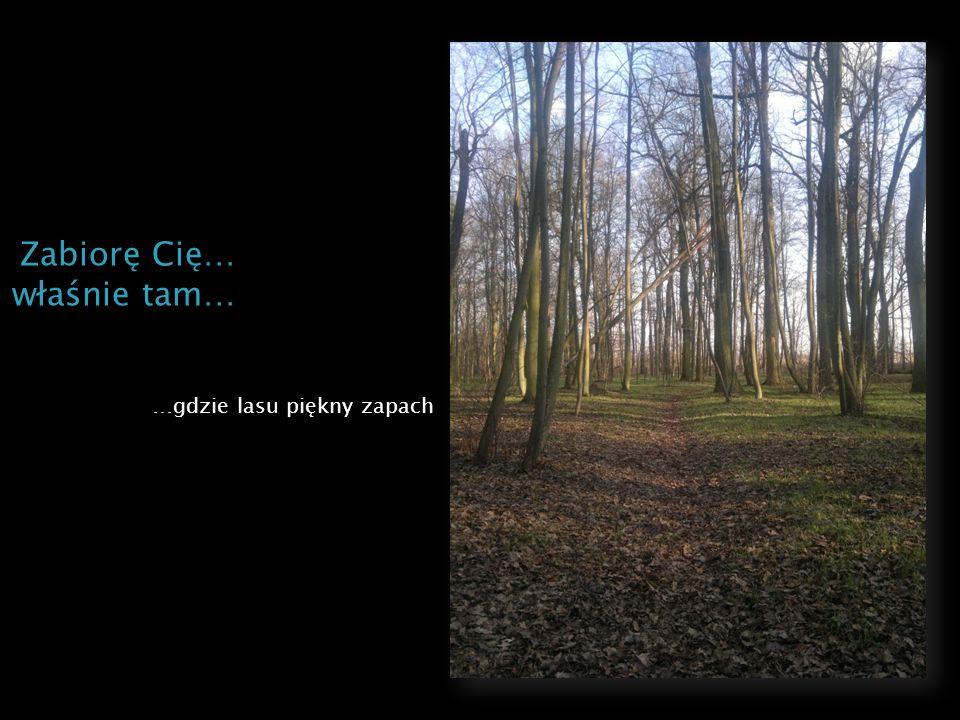 …gdzie lasu piękny zapach