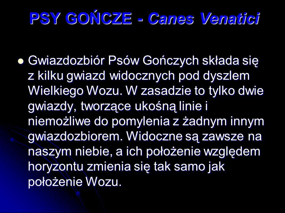 PSY GOŃCZE - Canes Venatici Gwiazdozbiór Psów Gończych składa się z kilku gwiazd widocznych pod dyszlem Wielkiego Wozu. W zasadzie to tylko dwie gwiaz