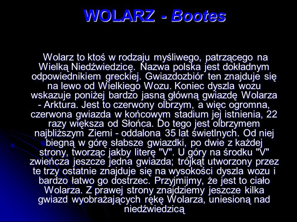 WOLARZ - Bootes Wolarz to ktoś w rodzaju myśliwego, patrzącego na Wielką Niedźwiedzicę. Nazwa polska jest dokładnym odpowiednikiem greckiej. Gwiazdozb