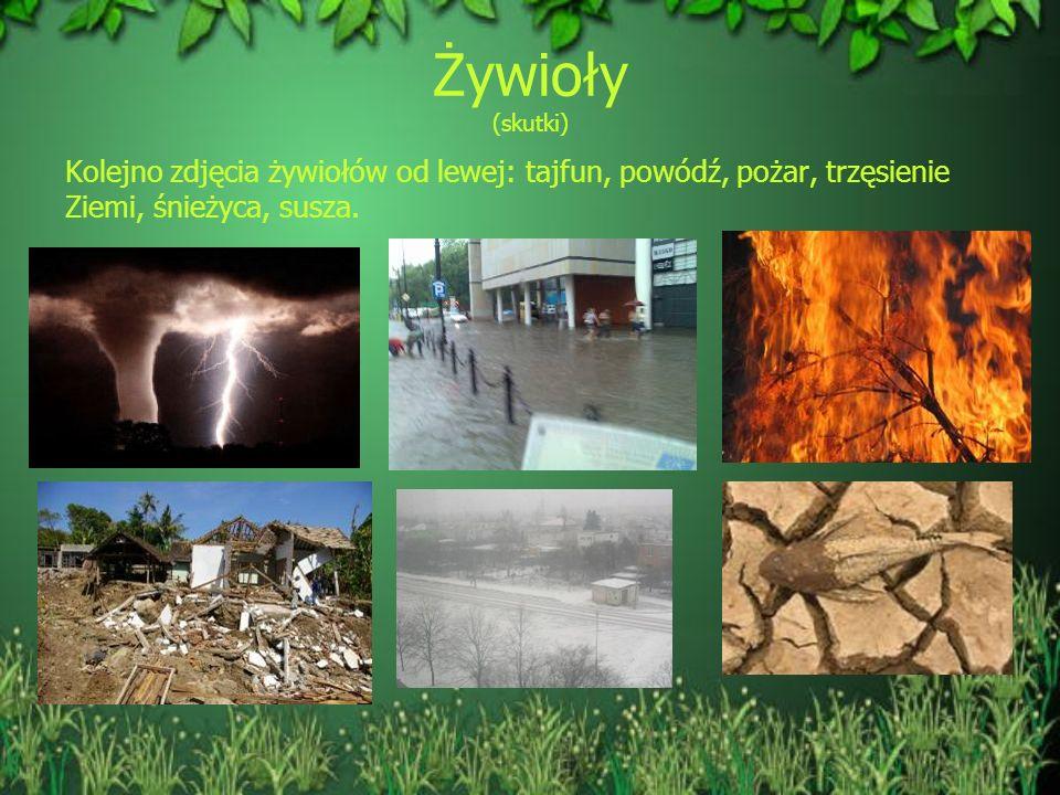 Żywioły (skutki) Kolejno zdjęcia żywiołów od lewej: tajfun, powódź, pożar, trzęsienie Ziemi, śnieżyca, susza.