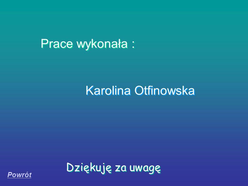 Dziękuję za uwagę Prace wykonała : Karolina Otfinowska Powrót