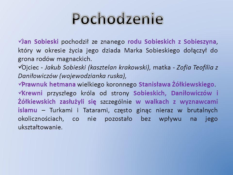 Jan Sobieski pochodził ze znanego rodu Sobieskich z Sobieszyna, który w okresie życia jego dziada Marka Sobieskiego dołączył do grona rodów magnackich