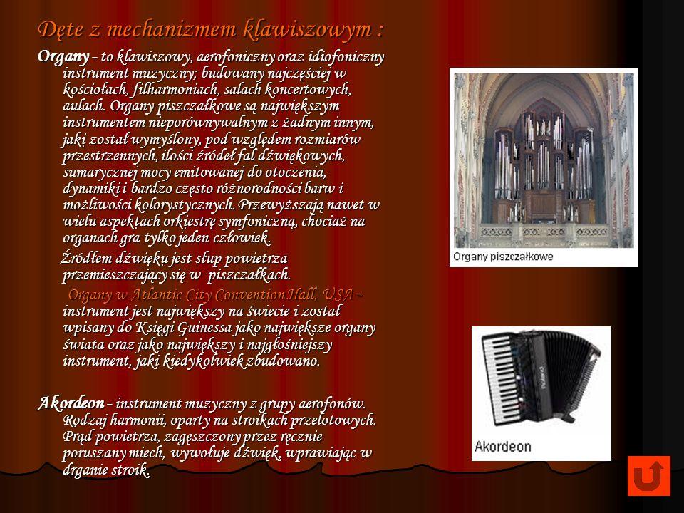 Tuba - Pomysł zbudowania tuby pierwszy wysunął Wilhelm Wiprecht – kapelmistrz armii pruskiej, a zrealizował go w 1835 r. producent instrumentów Johann