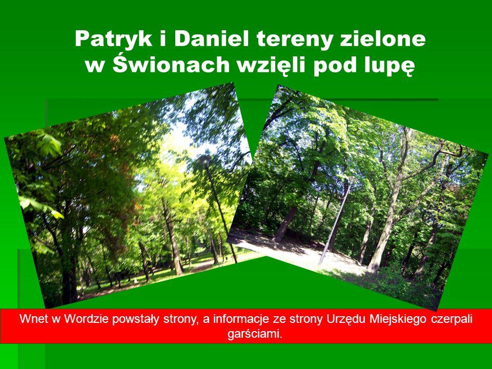 Patryk i Daniel tereny zielone w Świonach wzięli pod lupę Wnet w Wordzie powstały strony, a informacje ze strony Urzędu Miejskiego czerpali garściami.