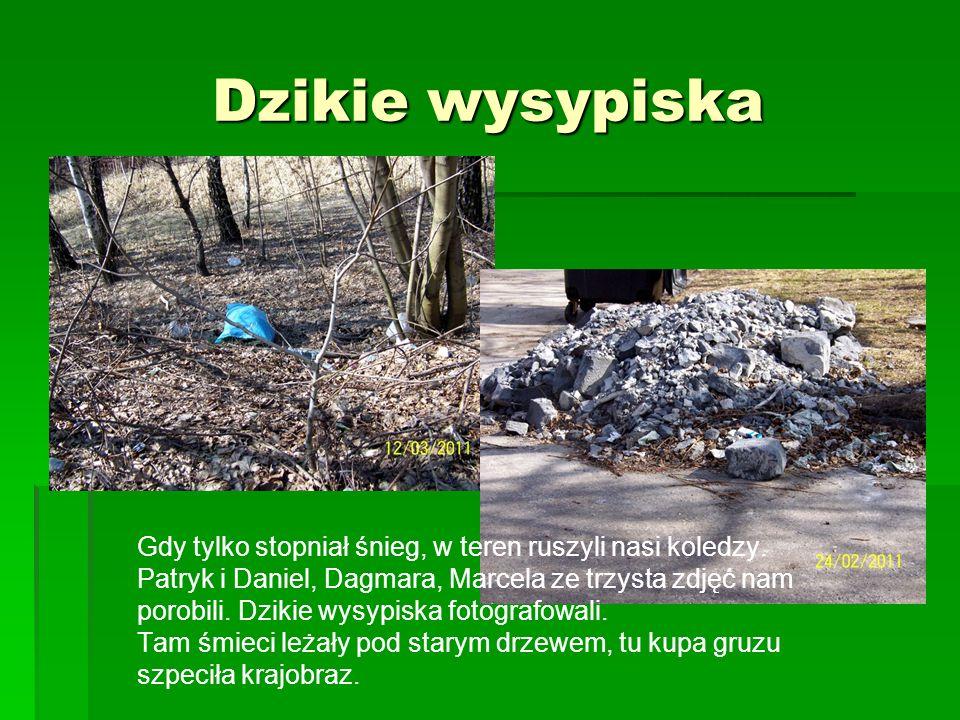 1.Park Heiloo 2.Wzgórze Hugona 3.Lasek chropaczowski 4.Planty Bytomskie 5.Skałka