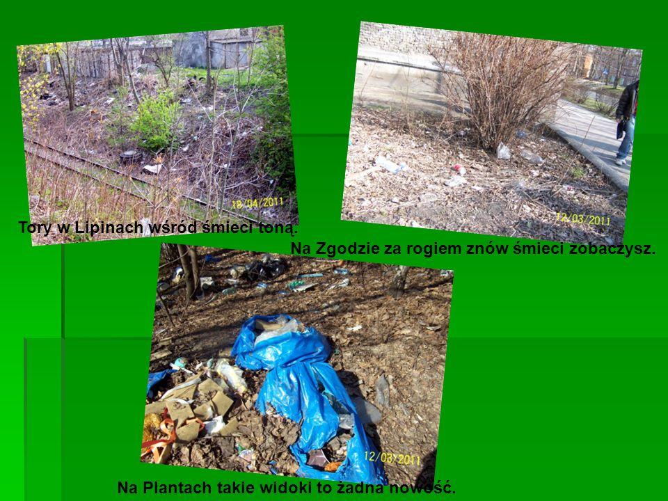 Tory w Lipinach wśród śmieci toną.Na Plantach takie widoki to żadna nowość.