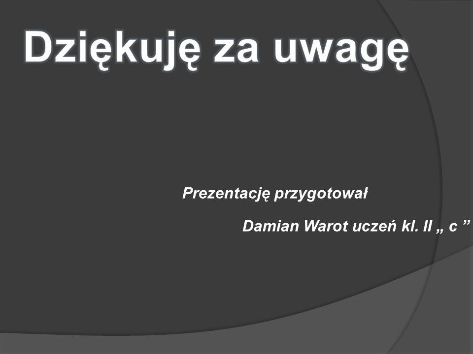Prezentację przygotował Damian Warot uczeń kl. II c