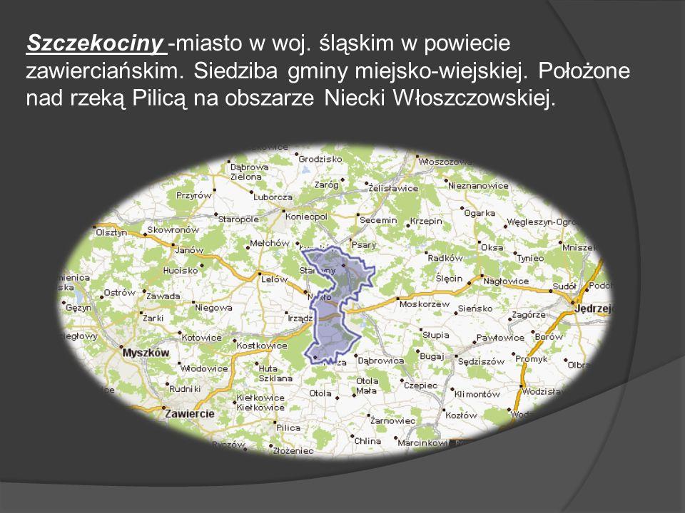 Szczekociny -miasto w woj. śląskim w powiecie zawierciańskim. Siedziba gminy miejsko-wiejskiej. Położone nad rzeką Pilicą na obszarze Niecki Włoszczow