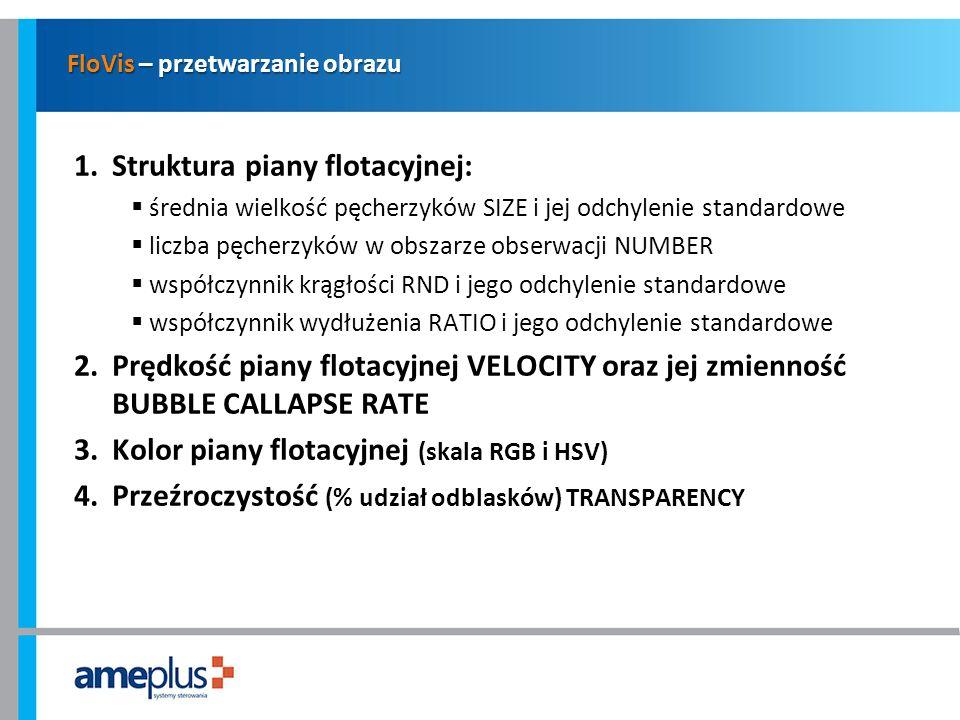 FloVis – przetwarzanie obrazu 1.Struktura piany flotacyjnej: średnia wielkość pęcherzyków SIZE i jej odchylenie standardowe liczba pęcherzyków w obsza