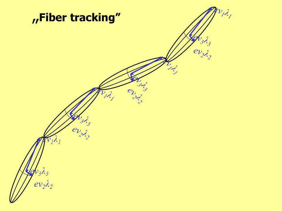 Fiber tracking ev 1 λ 1 ev 2 λ 2 ev 3 λ 3 ev 1 λ 1 ev 2 λ 2 ev 3 λ 3 ev 1 λ 1 ev 2 λ 2 ev 3 λ 3 ev 1 λ 1 ev 2 λ 2 ev 3 λ 3