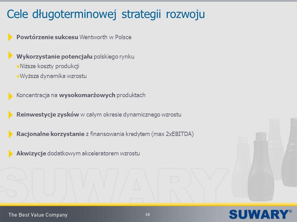 18 Cele długoterminowej strategii rozwoju Powtórzenie sukcesu Wentworth w Polsce Wykorzystanie potencjału polskiego rynku Niższe koszty produkcji Wyżs