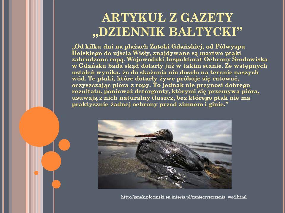 ARTYKUŁ Z GAZETY DZIENNIK BAŁTYCKI Od kilku dni na plażach Zatoki Gdańskiej, od Półwyspu Helskiego do ujścia Wisły, znajdywane są martwe ptaki zabrudz