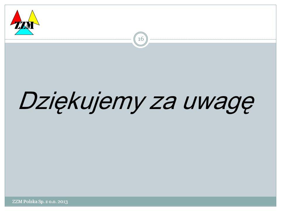 ZZM Polska Sp. z o.o. 2013 16 Dziękujemy za uwagę ZZM
