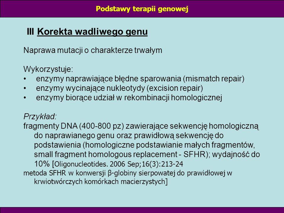 III Korekta wadliwego genu Naprawa mutacji o charakterze trwałym Wykorzystuje: enzymy naprawiające błędne sparowania (mismatch repair) enzymy wycinają