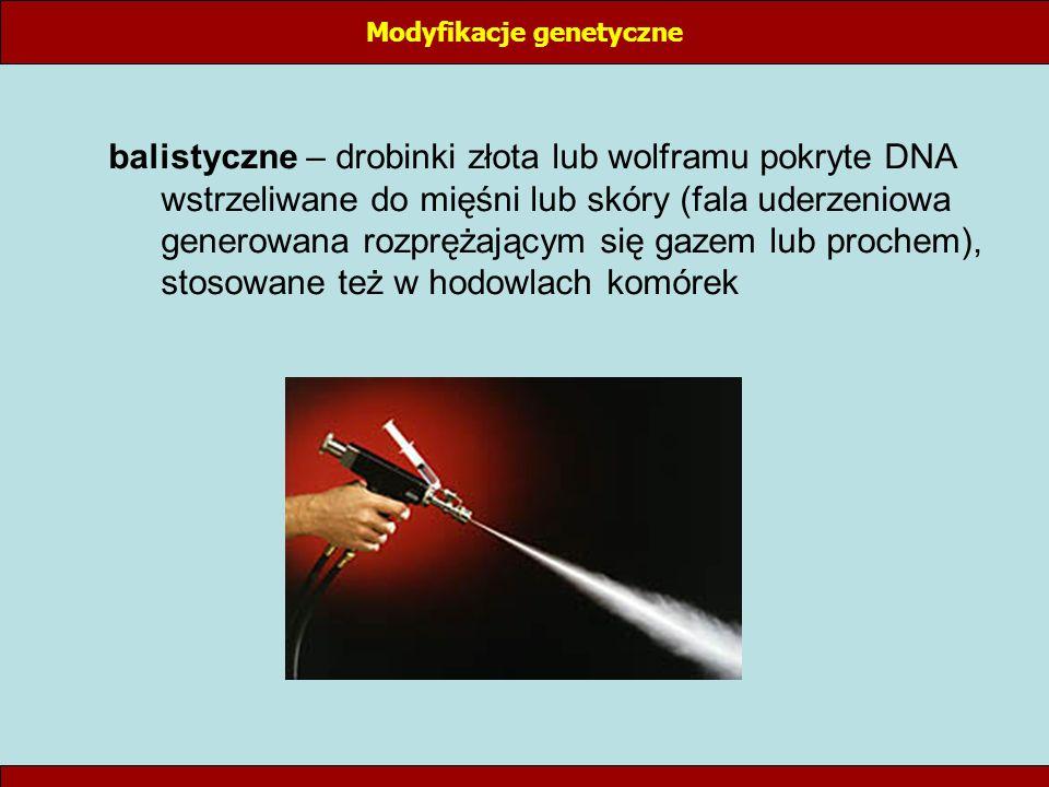balistyczne – drobinki złota lub wolframu pokryte DNA wstrzeliwane do mięśni lub skóry (fala uderzeniowa generowana rozprężającym się gazem lub proche