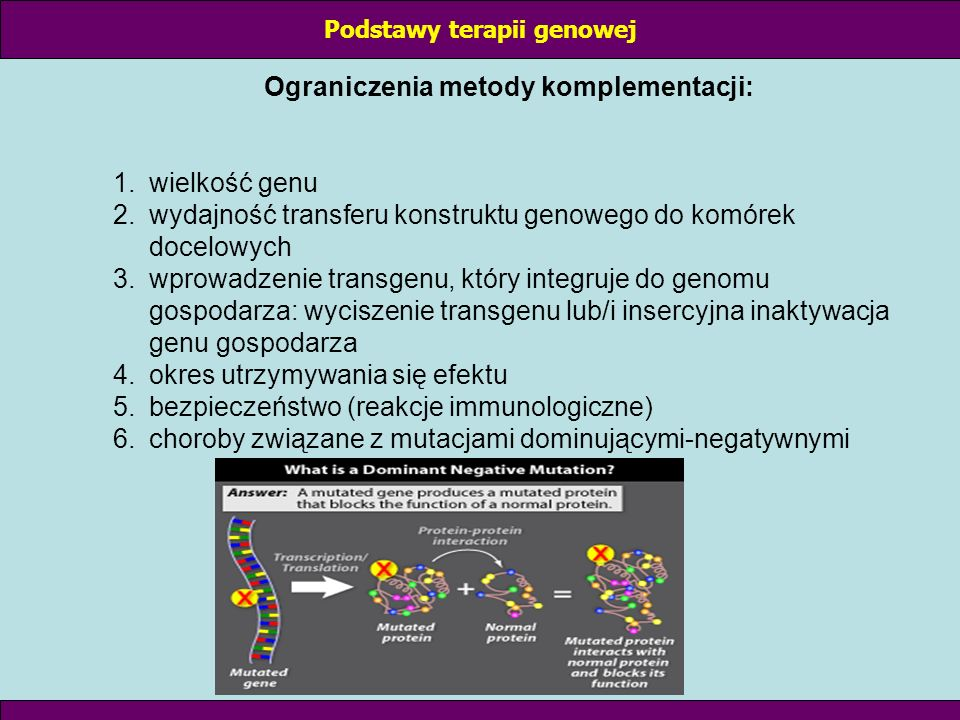 II Hamowanie ekspresji genu Specyficzne hamowanie ekspresji zmutowanego lub nadmiernie aktywnego genu (wyciszanie na poziomie DNA lub mRNA) protonkogeny – normalne geny odpowiedzialne za regulację podziałów komórkowych, różnicowanie i wzrost (myc, ras, abl) onkogen – powstaje na skutek aktywacji protoonkogenu; bierze udział w promocji nowotworów aktywacja protoonkogenu zachodzi na skutek: transdukcji, mutacji, translokacji, amplifikacji Podstawy terapii genowej
