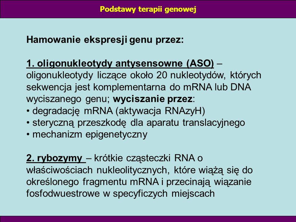 Hamowanie ekspresji genu przez: 1. oligonukleotydy antysensowne (ASO) – oligonukleotydy liczące około 20 nukleotydów, których sekwencja jest komplemen