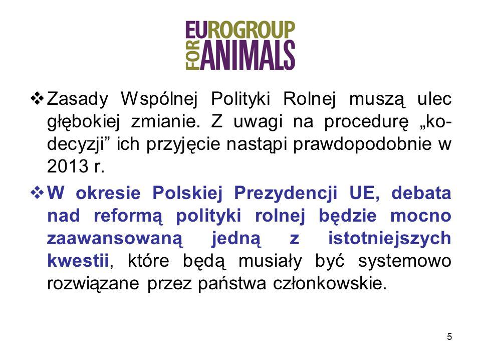 36 Co proponujemy: Płatności związane z lepszym traktowaniem zwierząt, które w pełni przyczyniłyby się do rozwoju zrównoważonego rolnictwa