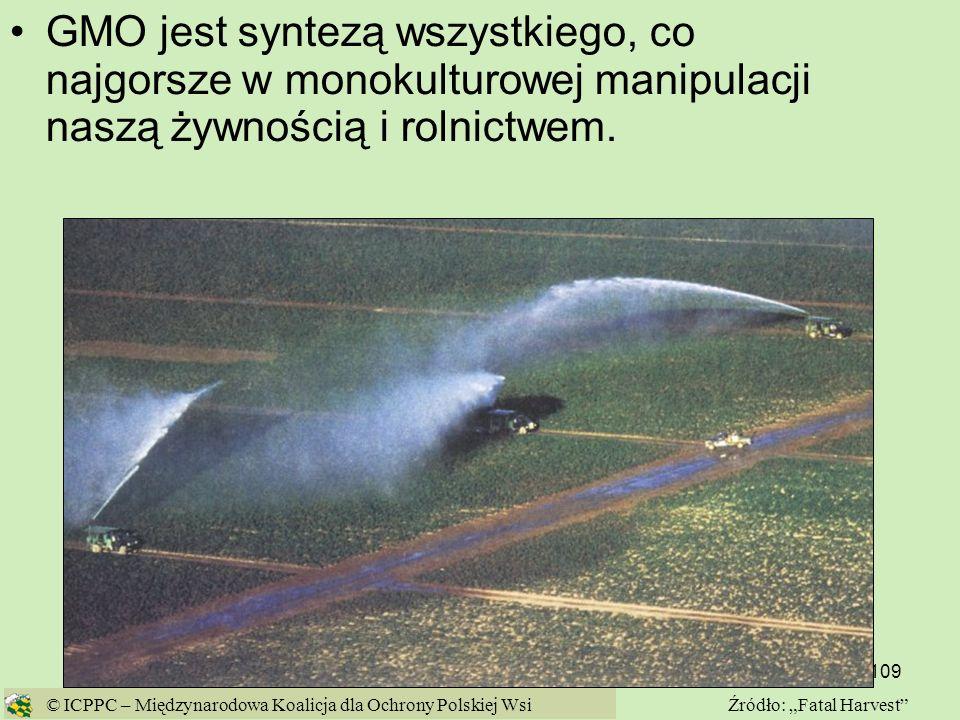 109 GMO jest syntezą wszystkiego, co najgorsze w monokulturowej manipulacji naszą żywnością i rolnictwem. © ICPPC – Międzynarodowa Koalicja dla Ochron