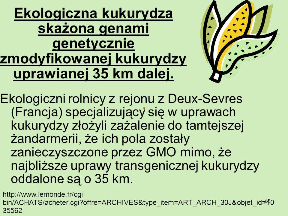 40 Ekologiczna kukurydza skażona genami genetycznie zmodyfikowanej kukurydzy uprawianej 35 km dalej. Ekologiczni rolnicy z rejonu z Deux-Sevres (Franc
