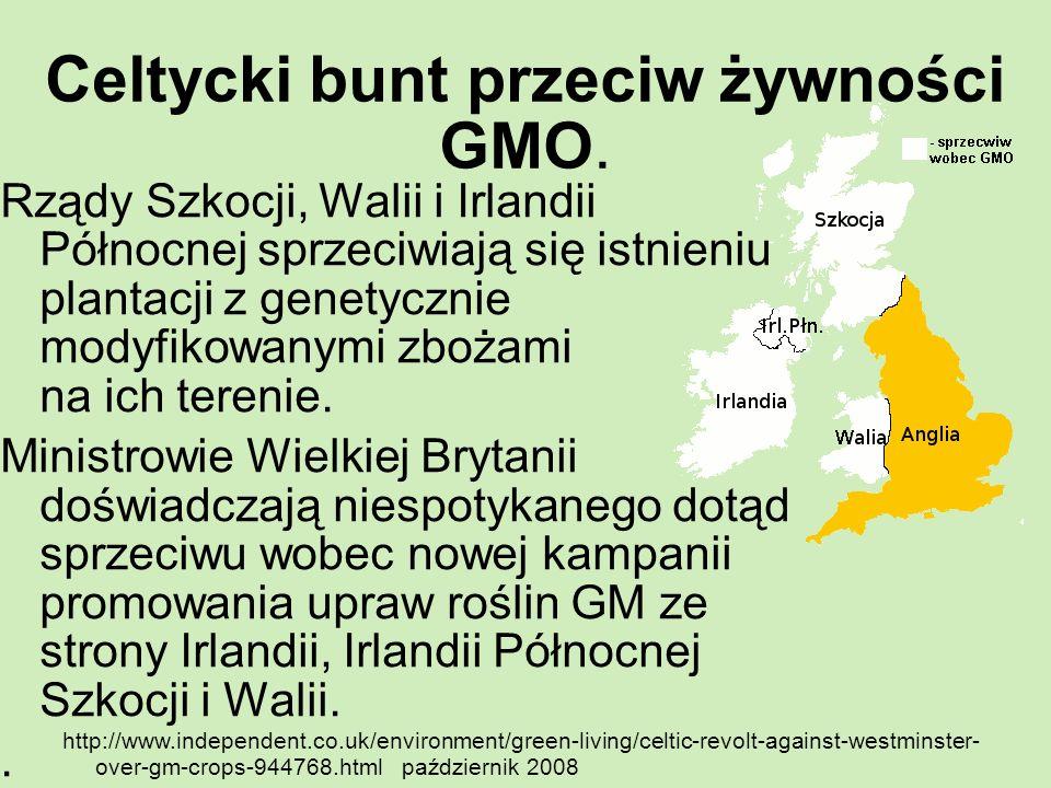 Celtycki bunt przeciw żywności GMO. Rządy Szkocji, Walii i Irlandii Północnej sprzeciwiają się istnieniu plantacji z genetycznie modyfikowanymi zbożam