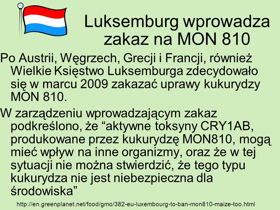 Luksemburg wprowadza zakaz na MON 810 Po Austrii, Węgrzech, Grecji i Francji, również Wielkie Księstwo Luksemburga zdecydowało się w marcu 2009 zakaza