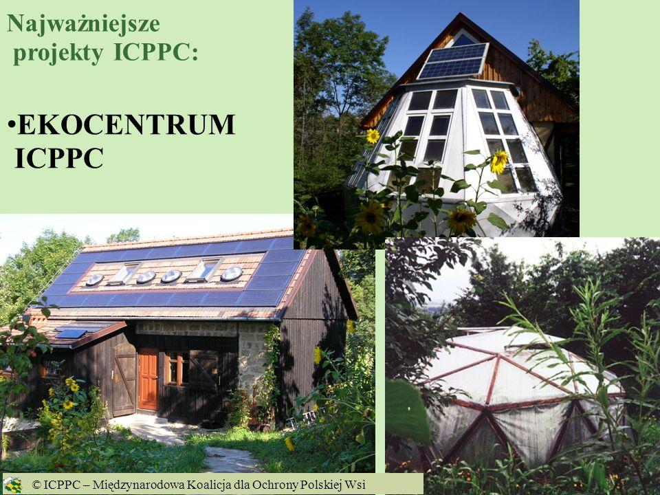7 kampania Stop dla GMO w Polsce www.gmo.icppc.pl © ICPPC – Międzynarodowa Koalicja dla Ochrony Polskiej Wsi Najważniejsze projekty ICPPC: