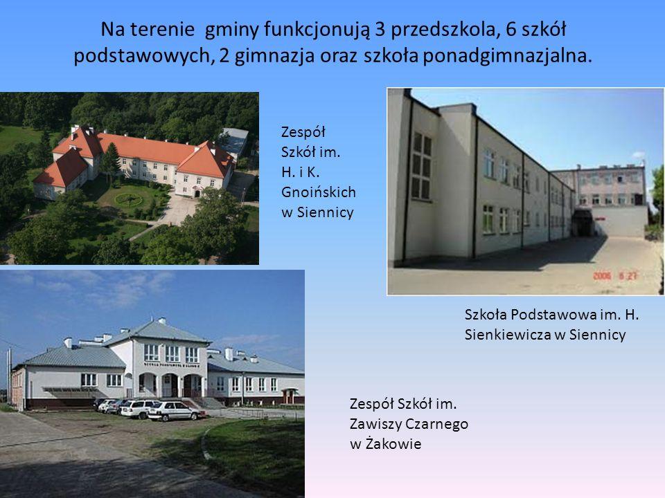 Na terenie gminy funkcjonują 3 przedszkola, 6 szkół podstawowych, 2 gimnazja oraz szkoła ponadgimnazjalna. Zespół Szkół im. H. i K. Gnoińskich w Sienn