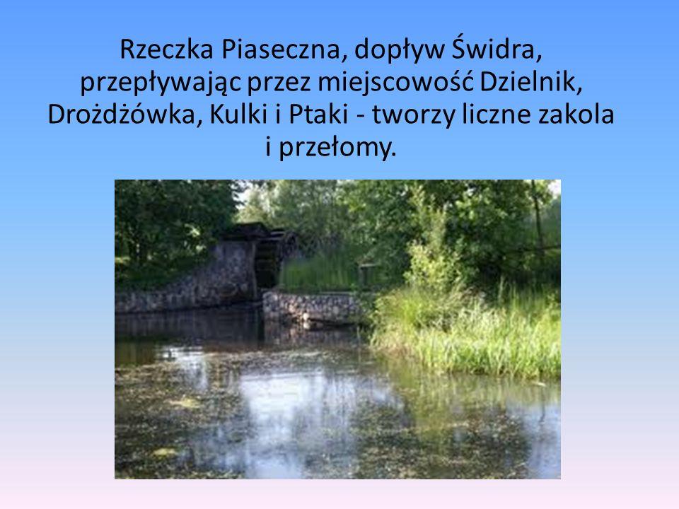 Duże zbiorniki wodne na terenie wsi Nowodwór, Lasomin i Siennica obręb Stara Wieś (o łącznej powierzchni 68,5 ha) są atrakcją dla mieszkańców gminy i ich gości.