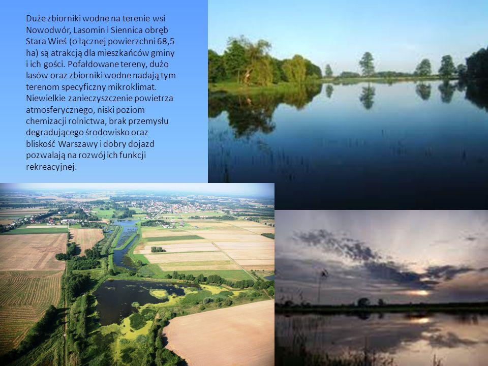 Duże zbiorniki wodne na terenie wsi Nowodwór, Lasomin i Siennica obręb Stara Wieś (o łącznej powierzchni 68,5 ha) są atrakcją dla mieszkańców gminy i