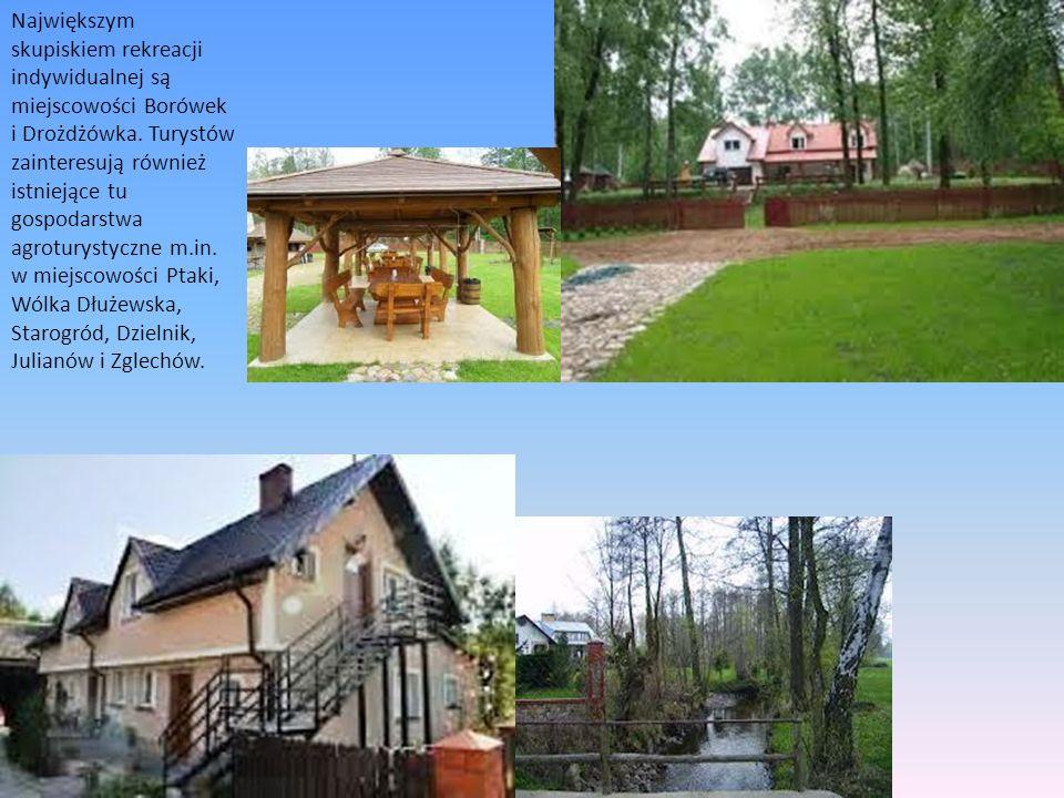 Największym skupiskiem rekreacji indywidualnej są miejscowości Borówek i Drożdżówka. Turystów zainteresują również istniejące tu gospodarstwa agrotury