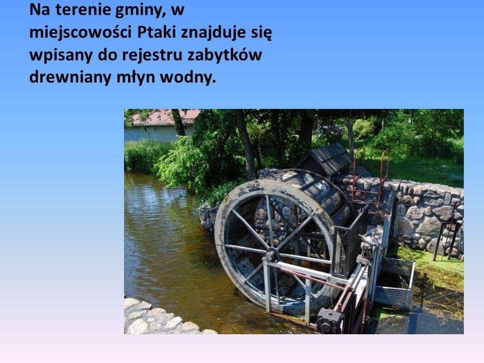 Na terenie gminy, w miejscowości Ptaki znajduje się wpisany do rejestru zabytków drewniany młyn wodny.