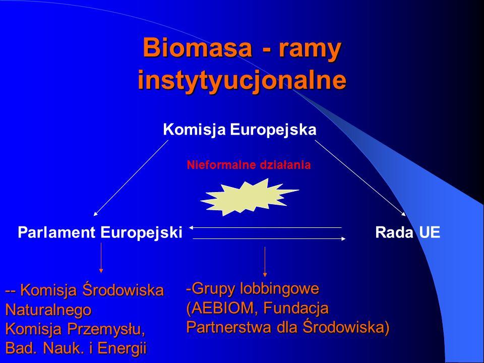 Biomasa - ramy instytyucjonalne Komisja Europejska Nieformalne działania Parlament EuropejskiRada UE -- Komisja Środowiska Naturalnego Komisja Przemys