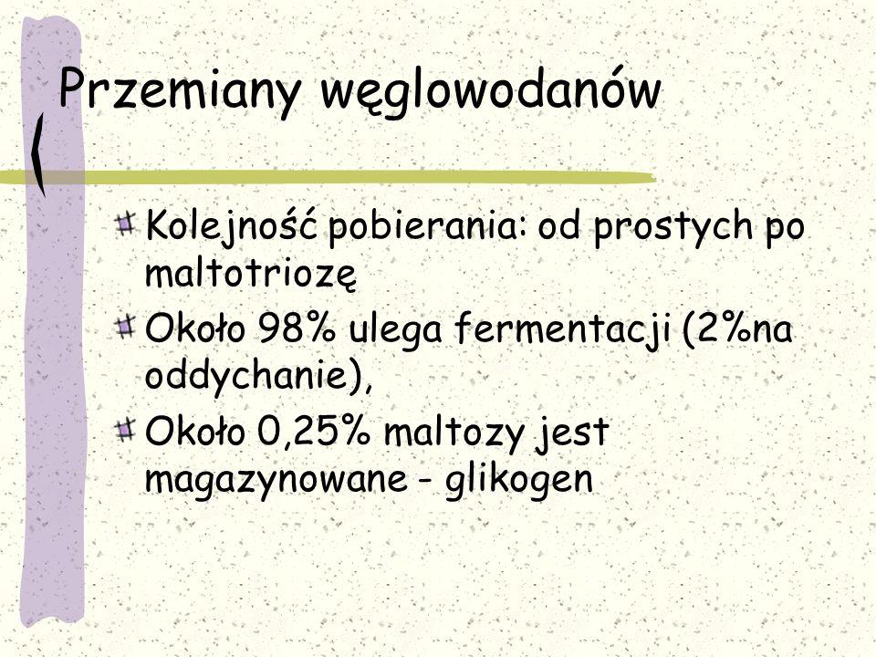 Przemiany węglowodanów Kolejność pobierania: od prostych po maltotriozę Około 98% ulega fermentacji (2%na oddychanie), Około 0,25% maltozy jest magazy