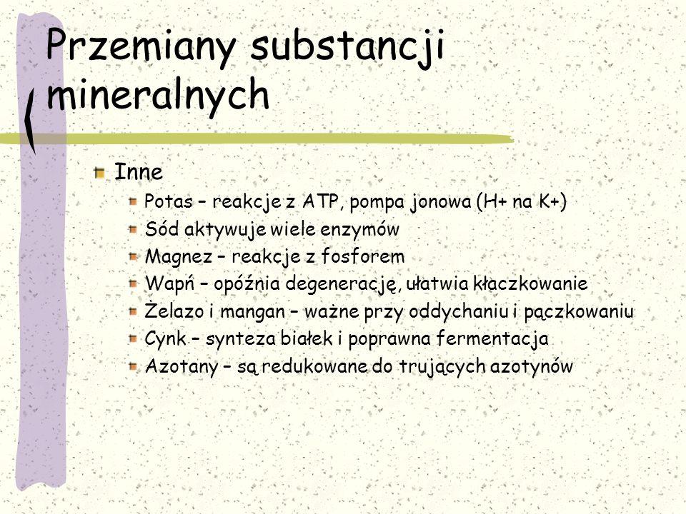 Przemiany substancji mineralnych Inne Potas – reakcje z ATP, pompa jonowa (H+ na K+) Sód aktywuje wiele enzymów Magnez – reakcje z fosforem Wapń – opó