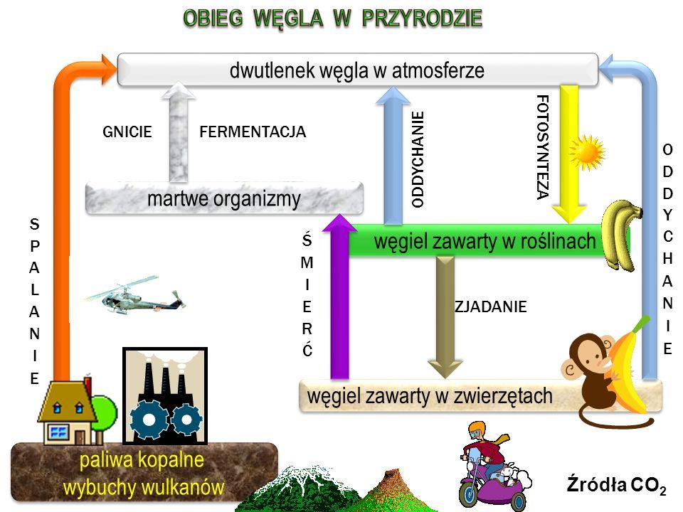 CO 2 + H 2 O C 6 H 12 O 6 + O 2 substraty produkty CO 2 + H 2 O C 6 H 12 O 6 + O 2 substraty produkty FOTOSYNTEZA to źródło TLENU w ATMOSFERZE i proce