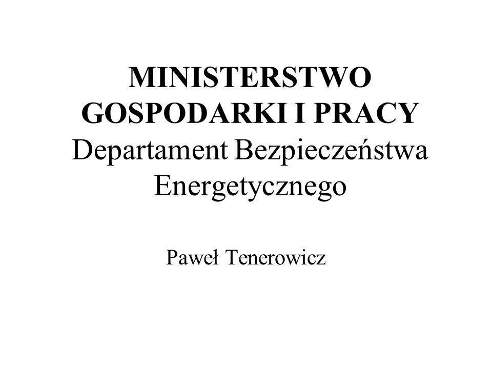 MINISTERSTWO GOSPODARKI I PRACY Departament Bezpieczeństwa Energetycznego Paweł Tenerowicz