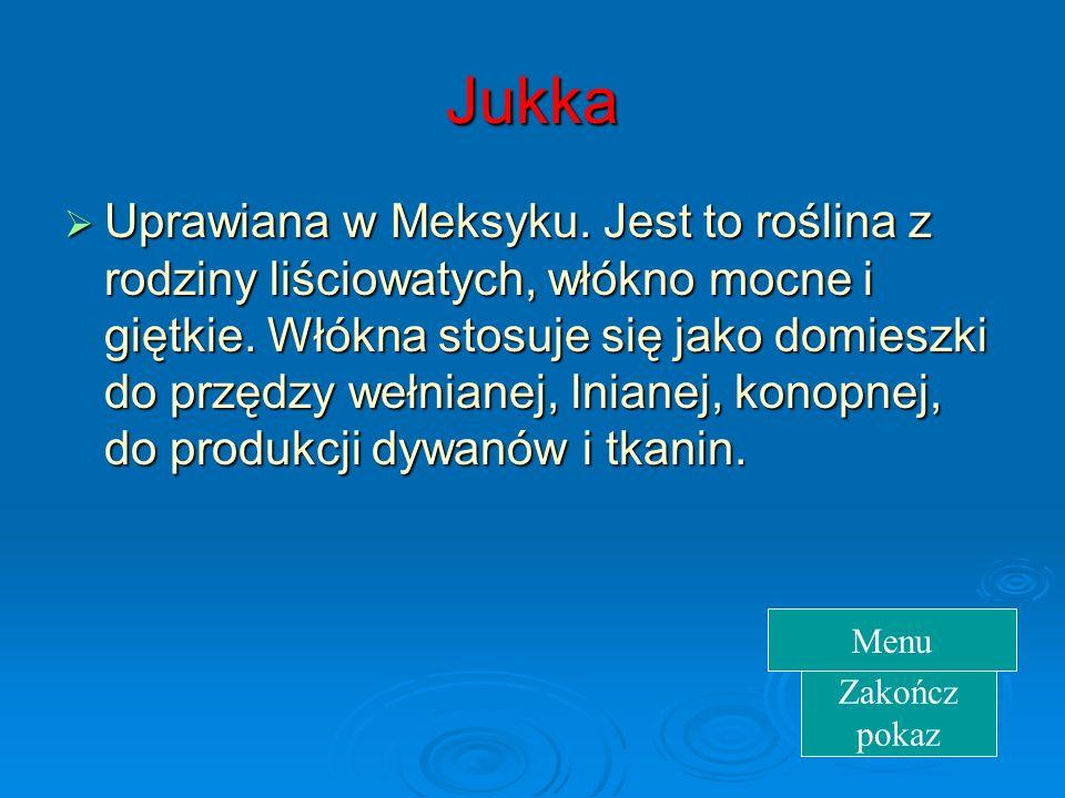 Jukka Uprawiana w Meksyku.Jest to roślina z rodziny liściowatych, włókno mocne i giętkie.