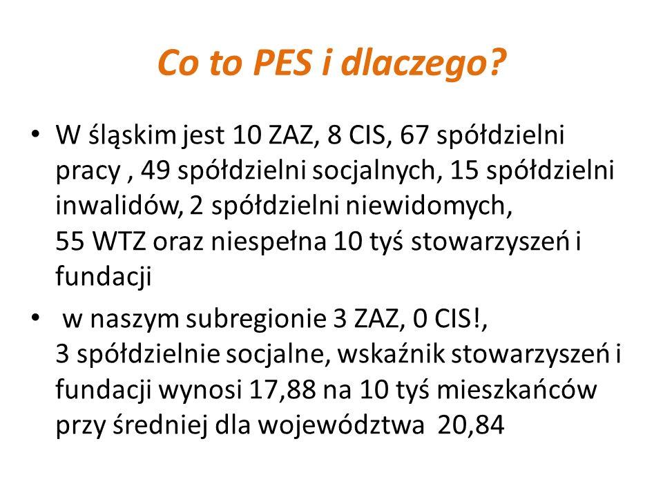Co to PES i dlaczego? W śląskim jest 10 ZAZ, 8 CIS, 67 spółdzielni pracy, 49 spółdzielni socjalnych, 15 spółdzielni inwalidów, 2 spółdzielni niewidomy