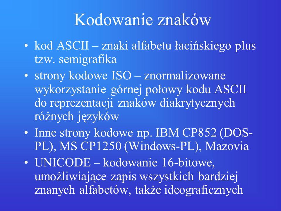 Kodowanie znaków kod ASCII – znaki alfabetu łacińskiego plus tzw. semigrafika strony kodowe ISO – znormalizowane wykorzystanie górnej połowy kodu ASCI