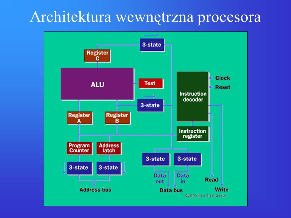 Rodziny procesorów Intel x86 (komputery PC): –16 bitowe: 8086/88, 80286 –32 bitowe: i386, i486, Pentium, Pentium Pro, Pentium II, Celeron, Pentium III, Celeron II, Pentium IV, Xeon –64 bitowe: Itanium (architektura EPIC) AMD (zgodna z x86): –32 bitowe: AMD486, 5x86, K5, K6, Athlon, Duron Motorola 68k (komputery Apple): –68000, 68020 (16-bit), 68030, 68040, 68060 (32-bit) architektury RISC (32, 64- bitowe – systemy UNIX): –Alpha (DEC/Compaq), MIPS (SGI), SPARC (Sun), PA (HP), Power (IBM), PowerPC (IBM/Motorola) (koprocesory FPU: 8087, 80287, 80387)