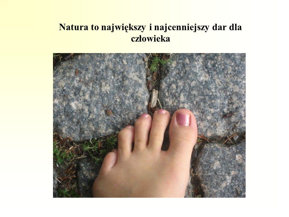 Natura to największy i najcenniejszy dar dla człowieka